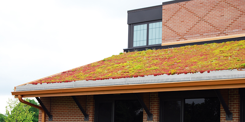 Edge Restraint Green Roof Products Green Roof Solutions