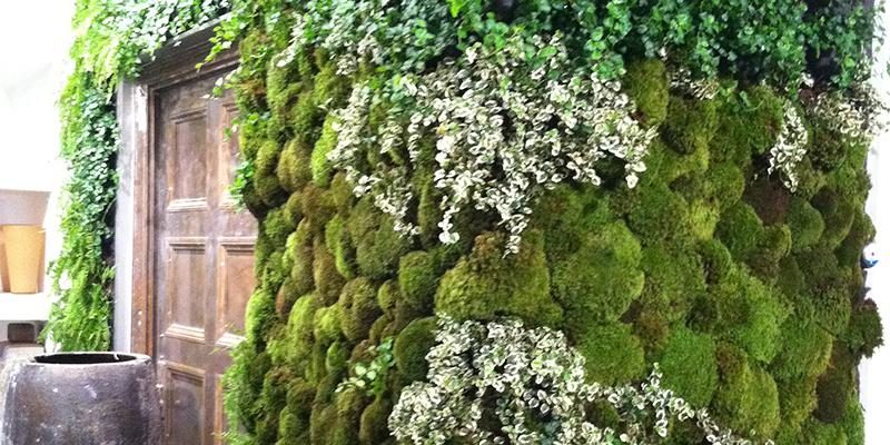 Living Walls. Green Roof Solutions ...