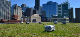 green roof products Green Roof Solutions