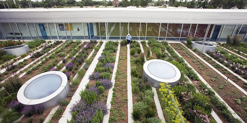 Green Roof Solutions offer everything needed to set up an urban gardening system, from growing vegetables on a small rooftop garden to a large scale urban farm.