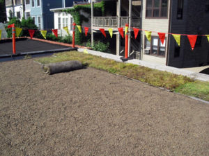 GRS-XMAT-sedum-vegetated-mat